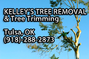kelley_tree_removal_tulsa_ok